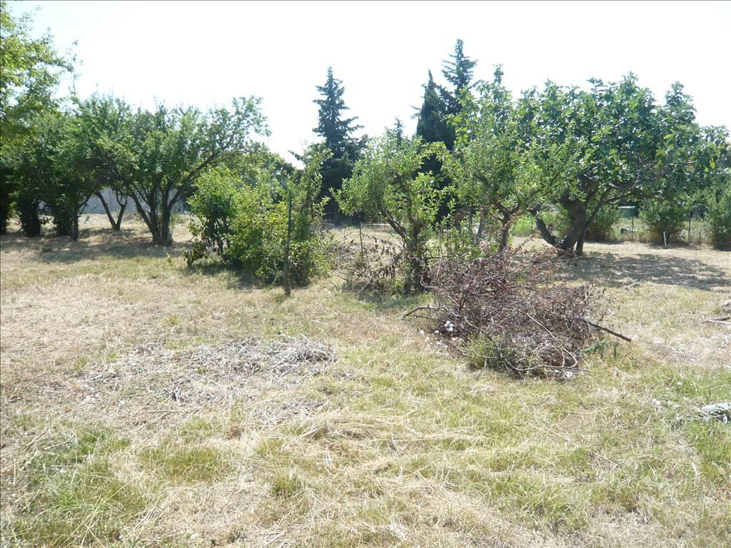 Vente Villa de Type 4  avec jardin de plus de 1800m² à Gignac La Nerthe